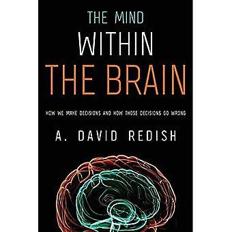 De geest binnen de hersenen: hoe we besluiten en hoe die besluiten verkeerd gaan