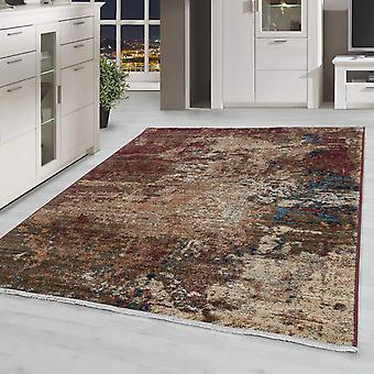 Modern Salon Tapis Vintage Multi Motif Court Used Look Optique coloré