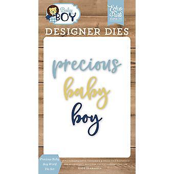 Echo Park Precious Baby Boy Word Dies