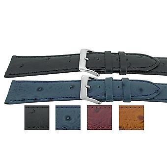 النعام الحبوب العجل جلد ووتش حزام هيبة الأناقة شبه تألق 12mm إلى 20mm