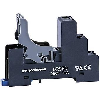 Crydom DRSED Relay socket Compatible with series: Crydom ED series (L x W x H) 71 x 15.5 x 49.5 mm 1 pc(s)