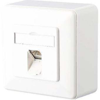 Metz Connect Network outlet Surface-mount CAT 6 1 port Pure white