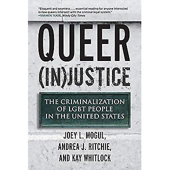 Queer (i) rättvisa: Kriminalisering av HBT-personer i Förenta staterna (Queer Action/Queer idéer bok)