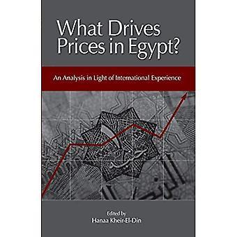 Quali prezzi di unità in Egitto?: un'analisi alla luce di esperienza internazionale