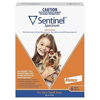Sentinel taajuuksien hyvin pieni koira 6 pack