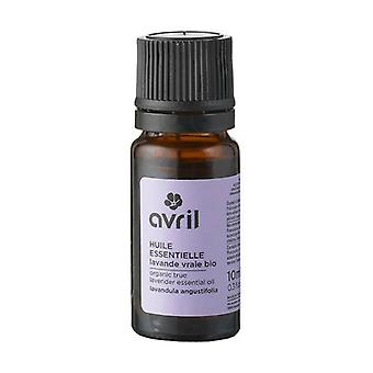 Organic real lavender essential oil 10 ml of essential oil