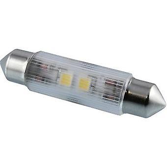 Signal konstruera LED festoon EEG: A + + (A + +-E) vit 12 V DC 50 LM 114362 MSOH