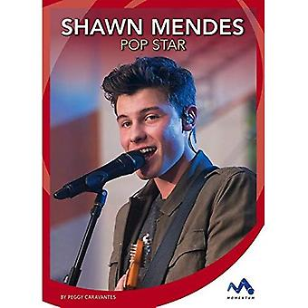 Shawn Mendes: Pop Star (Superstar Stories)