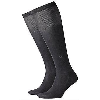 Burlington Cardiff calcetines hasta la rodilla - gris antracita
