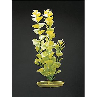 Marina AQUASCAPER JUMBO  MONEYWORT 50 cm (Poissons , Décoration , Plantes artificielles)