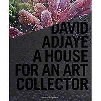 David Adjaye: Ein Haus für einen Kunstsammler