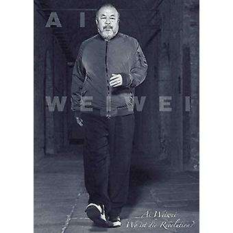 Ai Weiwei by Susanne Gaensheimer - 9783791359069 Book