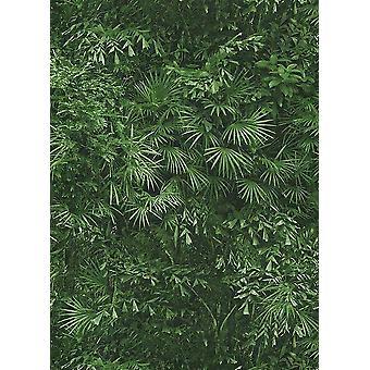 Tropical Leaf Jungle Wallpaper Leaves Forest Textured Paste Wall Vinyl Erismann