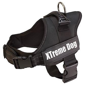 Arquivet koira valjaat Xtreme koira musta (koirat, kaula pannat, liidit ja valjaat, valjaat)