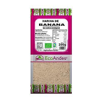 Banana Flour 250 g of powder