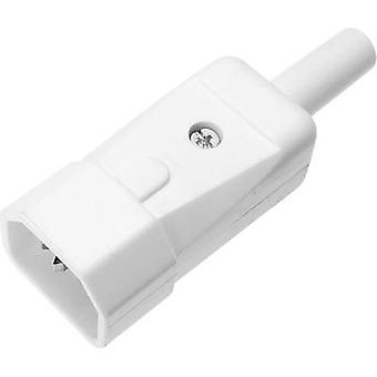 IEC connector 749 Series (mains connectors) 749 Plug, straight Total number of pins: 2 + PE 10 A White Kaiser 749/ws 1 pc(s)
