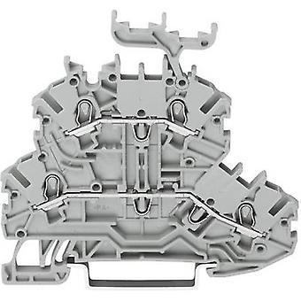 WAGO 2000-2201 Dualport continuïteit 3,50 mm Pull voorjaar configuratie: L, L grijs 1 PC('s)