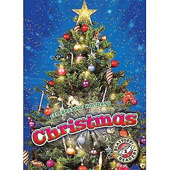 Kerstmis (viert vakantie!)