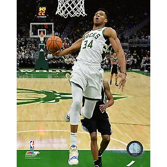 Giannis Antetokounmpo 2018-19 Action Photo Print