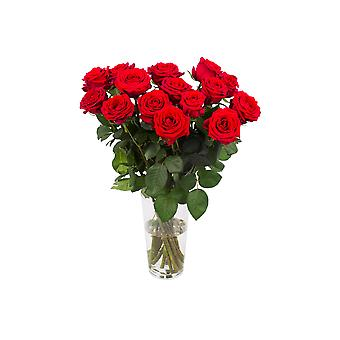 Bouquet from Botanicly – beautiful red bouquet of roses, medium – Height: 60 cm, 15 branches