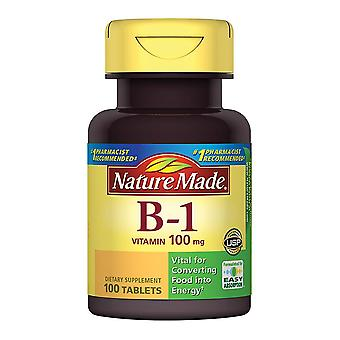 Nature made vitamin b-1, 100 mg, dietary supplement, tablets, 100 ea