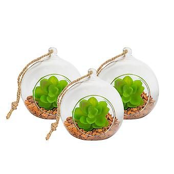 Nicola Spring Glass Plant Terrarium Set for Succulent Plants Ferns Cactus - Tabletop or Hanging Display - 100mm - Pack of 3