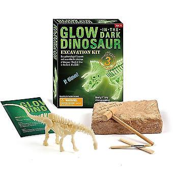 Jouets de fouille archéologique fossile de dinosaures éducatifs de 6 ans et plus (Diplodocus D70922)
