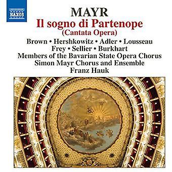 Mayr / brun / Hershkowitz / Adler / Lousseau - Il Sogno Di Partenope [DVD] USA import