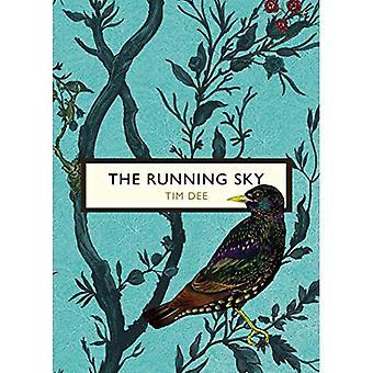 La Sky Running (gli uccelli e le API): una vita di Bird-watching (serie di API e uccelli classici Vintage)