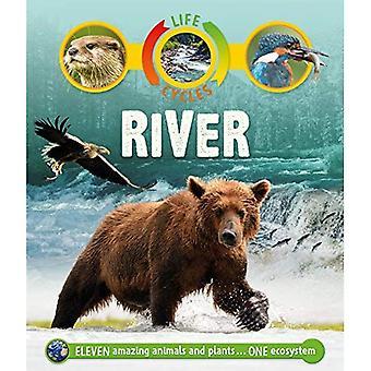 Livscykler: River (livscykler)