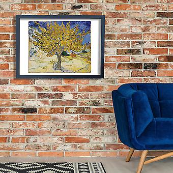 Vincent Van Gogh - Mulberry Tree, 1889 Poster Print Giclee