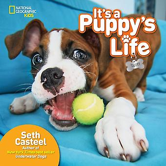 Its a Puppys Life by National Geographic Kids & With Seth Casteel