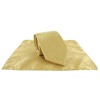 Michelsons Londyn tonalnych poliester Paisley Pocket Square i krawat zestaw - złoto