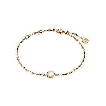 Daisy Rose Quartz Healing Stone Bobble 18ct Gold Plate Bracelet HBR1005_GP