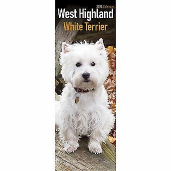 Otter House West Highland White Terrier Slim Calendar 2022