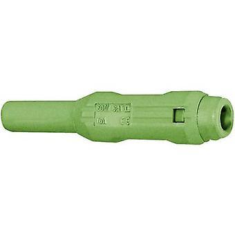 Stäubli SL205-BA Jack aansluiting Socket, rechte Pin-diameter: 2 mm groen 1 PC('s)