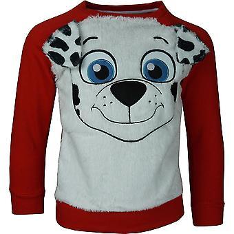 Boys Paw Patrol RH1196 Sweatshirt Size: 3-6 Years