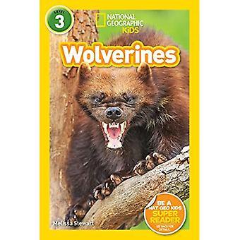 Leitores de crianças geográfica nacional: Wolverines (L3) (leitores) (leitores)