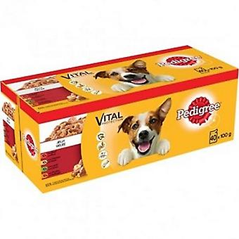 Pedigree Mixed Selection In Jelly Wet Dog Food  (Pack Of 40)