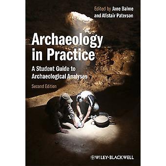 Archeologie in de praktijk - Een studentengids voor archeologische analyses (