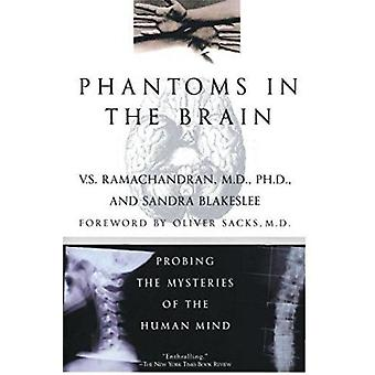 Phantoms in the Brain - Probing the Mysteries of the Human Mind by Ram