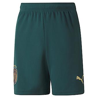 Puma Kinder Kinder Italien dritte Shorts 2020 Junior Shirt Shorts Fußball Set