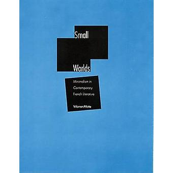 Small Worlds - Minimalism in Contemporary French Literature by Warren