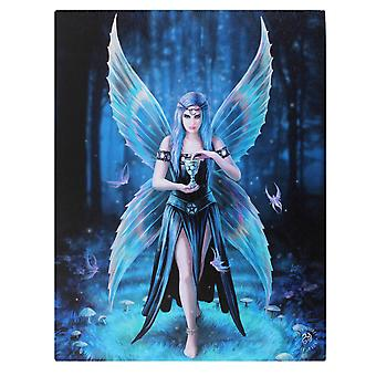 19x25cml Enchantment Canvas Plaque by Anne Stokes