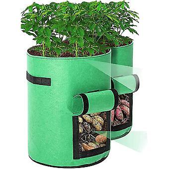 שקית צמח עם hle 2pcs dt6186