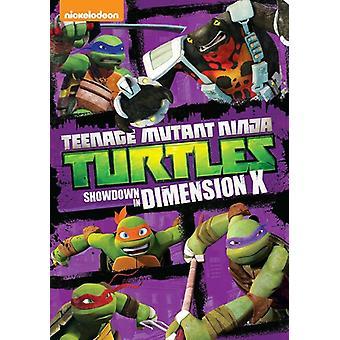 Teenage Mutant Ninja Turtles: Showdown in USA [DVD] import