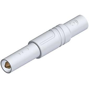 Segurança de lâmina SKS Hirschmann LAS S G reta plug Plug, em linha reta diâmetro do pino: 4 mm branco 1 computador (es)