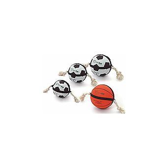 Actionball futebol cão brinquedo