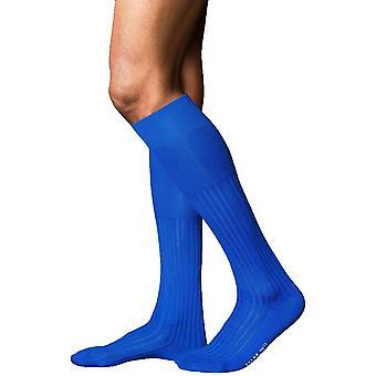 Falke No13 melhores Piuma algodão altura do joelho meias - azul Olímpico