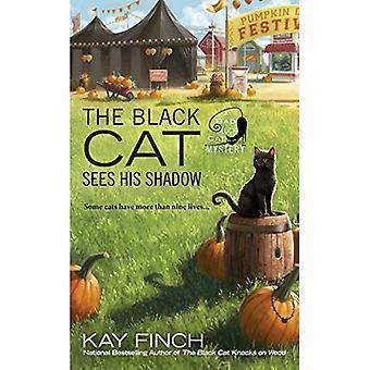 Den svarte katten ser hans skygge (uflaks katten mysterium)